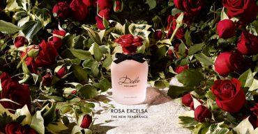 Dolce & Gabbana – Dolce Rosa Excelsa Eau de Parfum